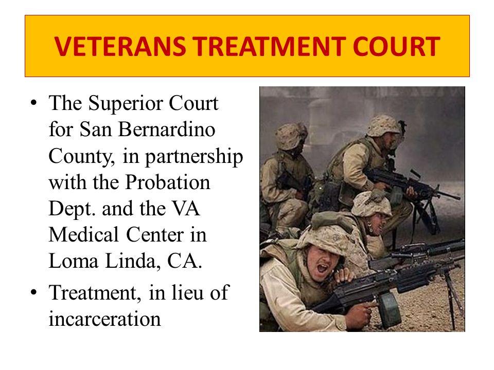 VETERANS TREATMENT COURT Problems adjusting to civilian life, – Mental Health – Dual Diagnosis Substance abuse – Alcohol – Prescriptions – Meth – Marijuana – Cocaine