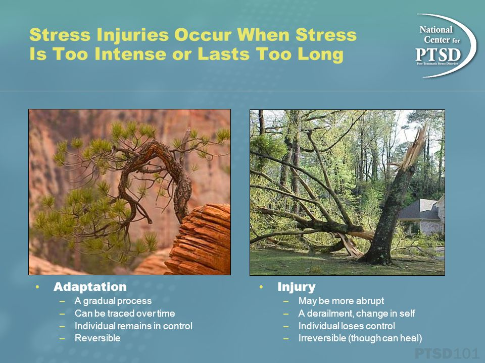 Stress Injuries Occur When Stress Is Too Intense or Lasts Too Long Injury – May be more abrupt – A derailment, change in self – Individual loses control – Irreversible (though can heal) Adaptation – A gradual process – Can be traced over time – Individual remains in control – Reversible
