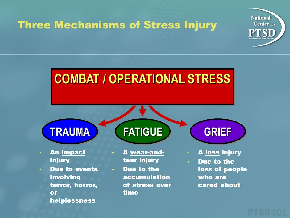 Three Mechanisms of Stress Injury TRAUMATRAUMA An impact injury Due to events involving terror, horror, or helplessness GRIEFGRIEF A loss injury Due to the loss of people who are cared about FATIGUEFATIGUE A wear-and- tear injury Due to the accumulation of stress over time COMBAT / OPERATIONAL STRESS
