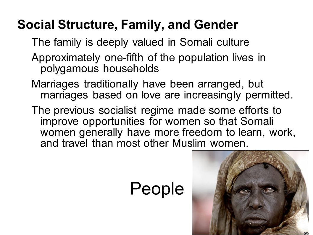 People Social Structure, Family, and Gender The family is deeply valued in Somali culture Approximately one-fifth of the population lives in polygamou