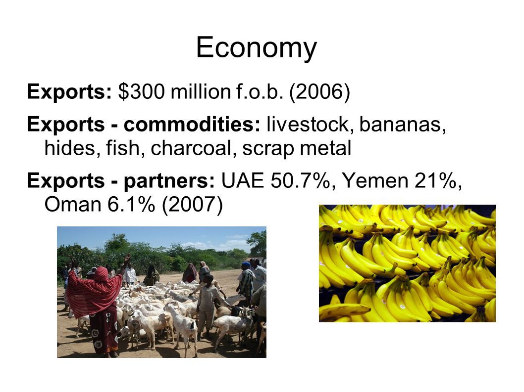 Economy Exports: $300 million f.o.b. (2006) Exports - commodities: livestock, bananas, hides, fish, charcoal, scrap metal Exports - partners: UAE 50.7