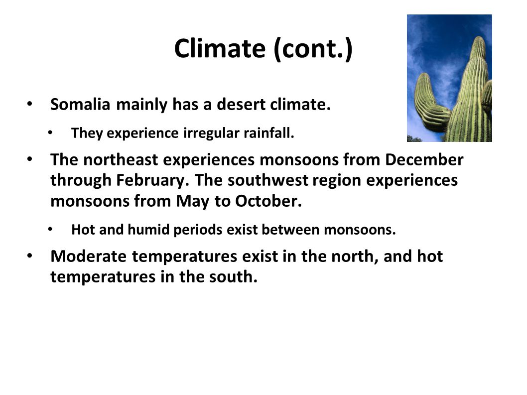 Climate (cont.) Somalia mainly has a desert climate. They experience irregular rainfall. The northeast experiences monsoons from December through Febr