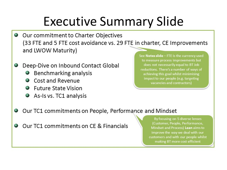Executive Summary Slide Our commitment to Charter Objectives (33 FTE and 5 FTE cost avoidance vs.
