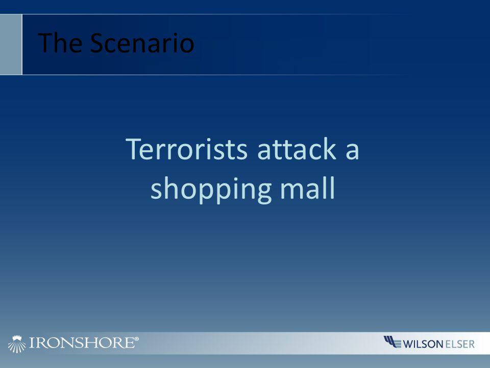 Terrorists attack a shopping mall The Scenario