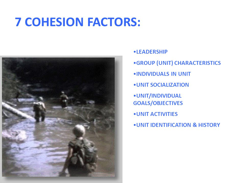 LEADERSHIP GROUP (UNIT) CHARACTERISTICS INDIVIDUALS IN UNIT UNIT SOCIALIZATION UNIT/INDIVIDUAL GOALS/OBJECTIVES UNIT ACTIVITIES UNIT IDENTIFICATION & HISTORY 7 COHESION FACTORS: