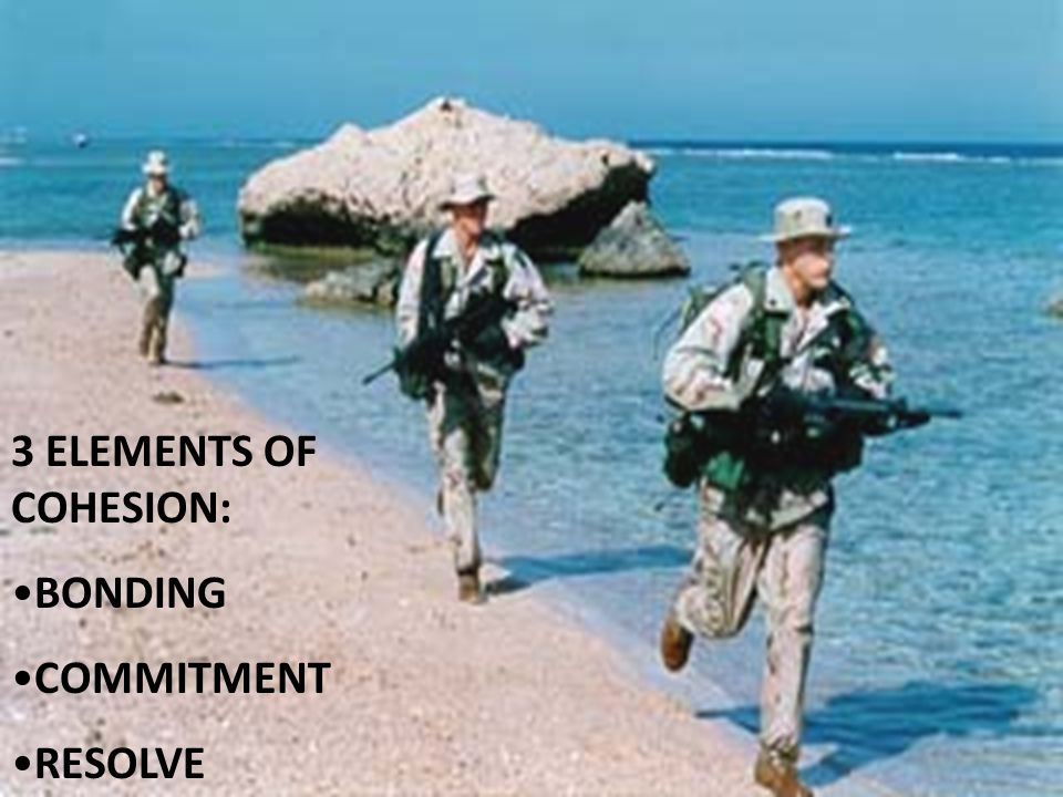 3 ELEMENTS OF COHESION: BONDING COMMITMENT RESOLVE