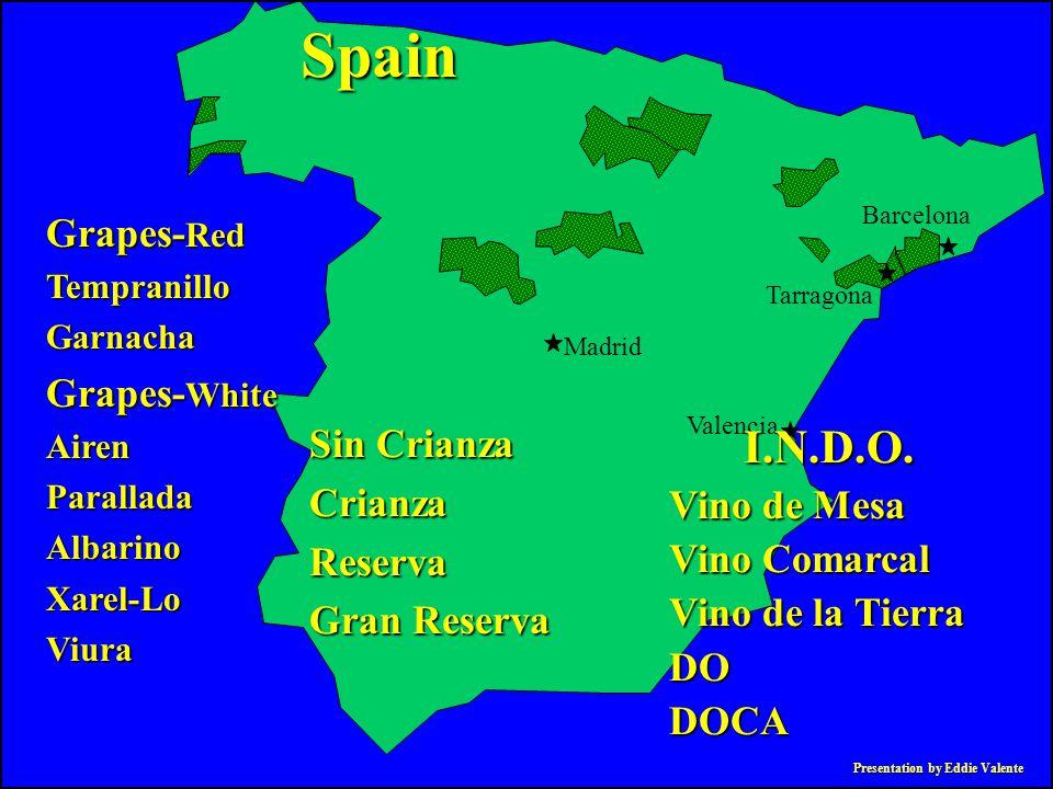 Presentation by Eddie Valente Grapes- Red TempranilloGarnacha Grapes- White AirenParalladaAlbarinoXarel-LoViura Spain Madrid Valencia Tarragona Barcel