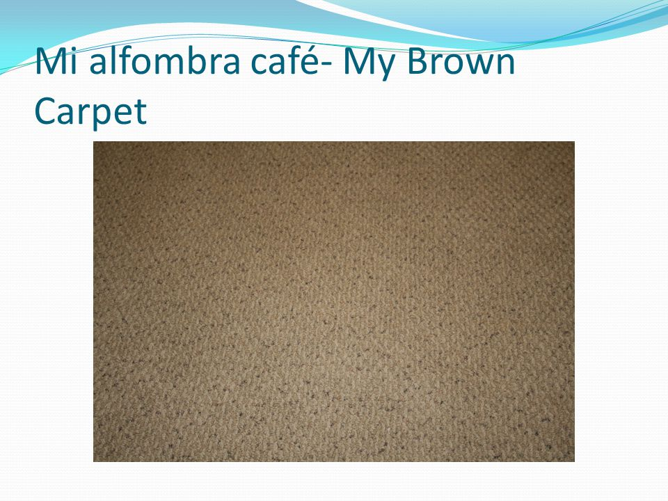 Mi alfombra café- My Brown Carpet