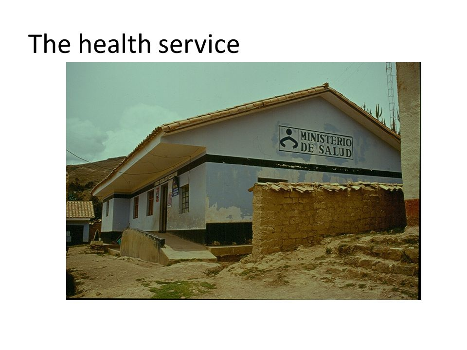 The health service