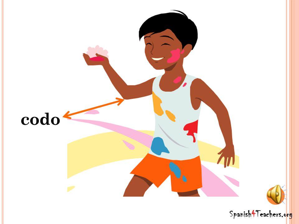 brazo Spanish4Teachers.org