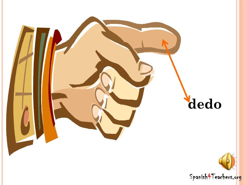Spanish4Teachers.org mano
