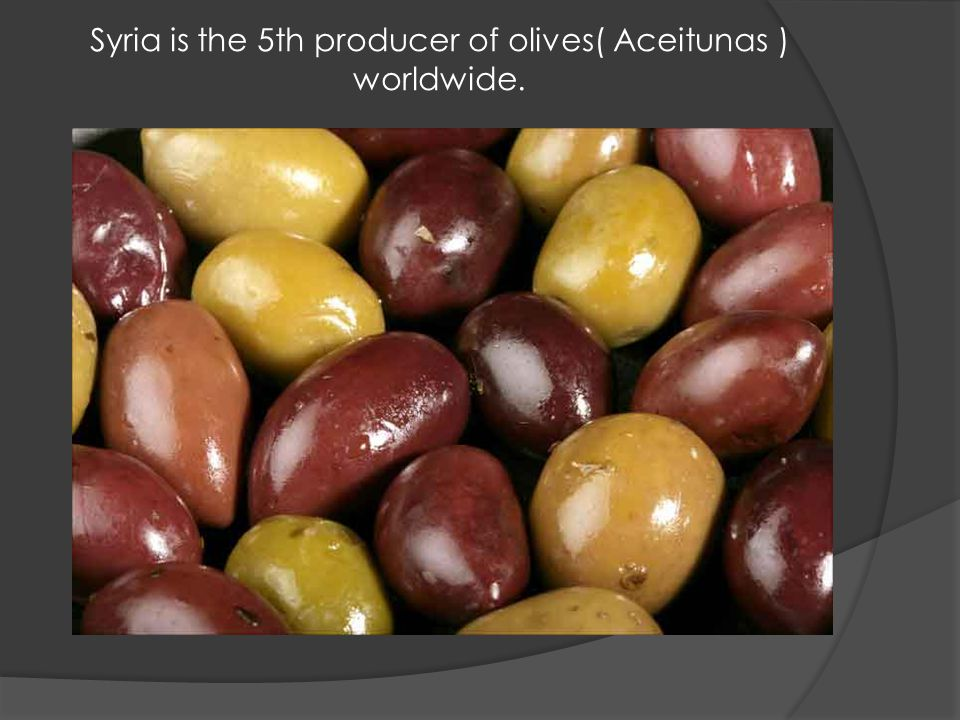 Syria is the 5th producer of olives( Aceitunas ) worldwide.