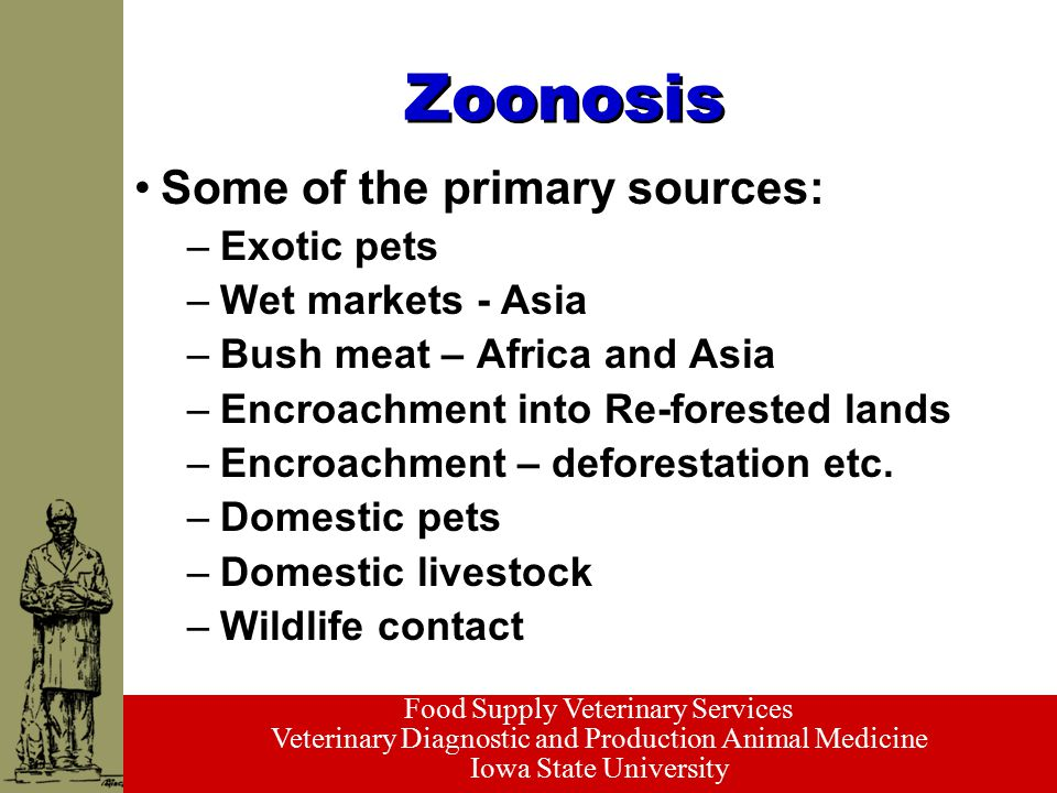 Food Supply Veterinary Services Veterinary Diagnostic and Production Animal Medicine Iowa State University Zoonosis Some of the primary sources: –Exot