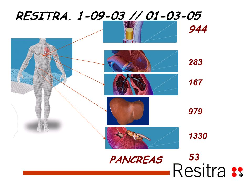 1330 979 167 283 944 PANCREAS 53 RESITRA. 1-09-03 // 01-03-05
