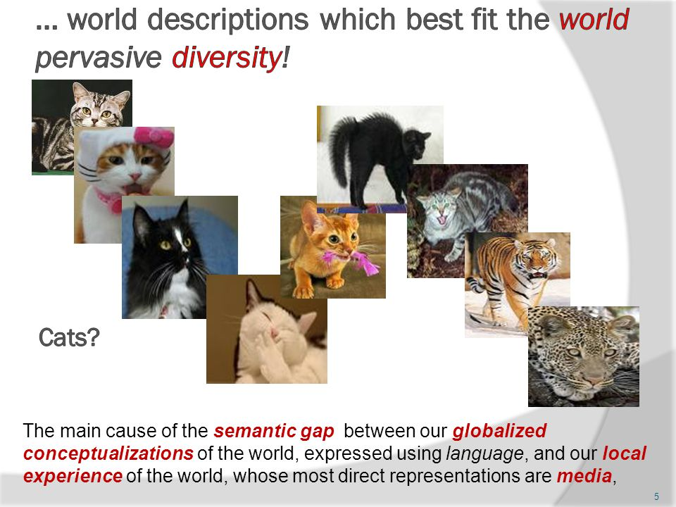 5 The main cause of the semantic gap between our globalized conceptualizations of the world, expressed using language, and our local experience of the