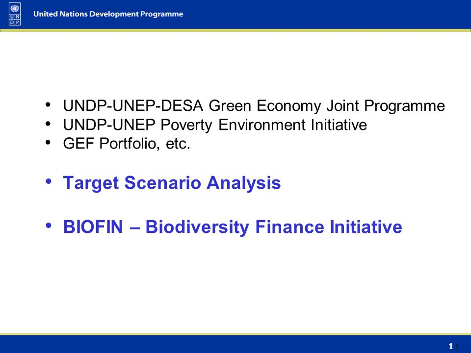 1 UNDP-UNEP-DESA Green Economy Joint Programme UNDP-UNEP Poverty Environment Initiative GEF Portfolio, etc. Target Scenario Analysis BIOFIN – Biodiver