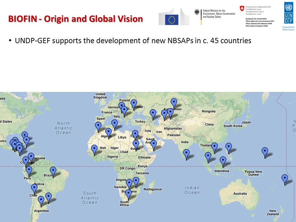 BIOFIN - Origin and Global Vision UNDP-GEF supports the development of new NBSAPs in c. 45 countries