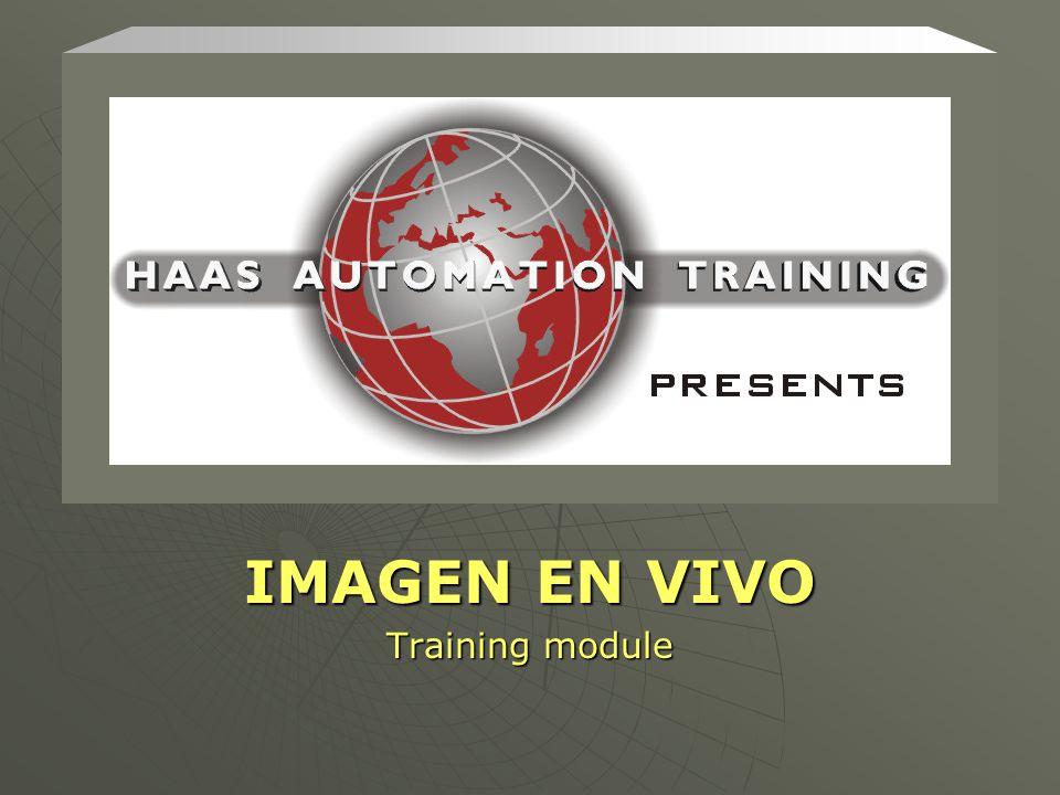 Estructura de Imagen en Vivo  Definición del Material  Definir orientacion.