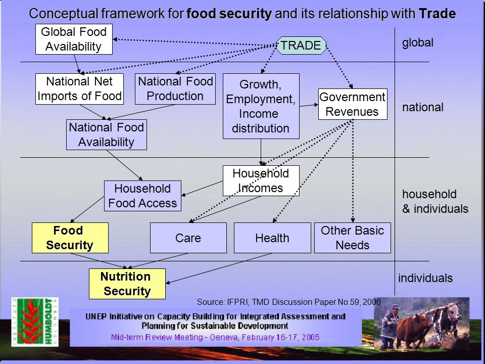 Conceptual framework for food security and its relationship with Trade TRADE global national household & individuals individuals Global Food Availability National Net Imports of Food National Food Production National Food Availability Government Revenues Growth, Employment, Income distribution Household Incomes Household Food Access FoodSecurity CareHealth Other Basic Needs NutritionSecurity Source: IFPRI, TMD Discussion Paper No.59, 2000