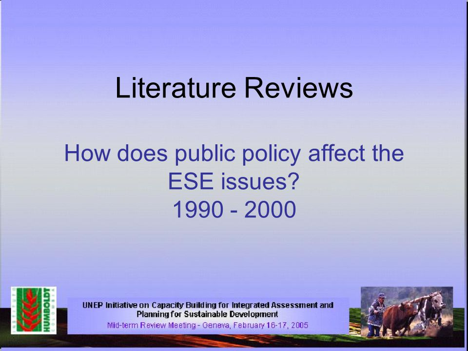 Literature Reviews How does public policy affect the ESE issues? 1990 - 2000