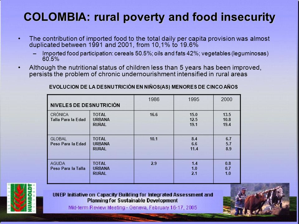 COLOMBIA: rural poverty and food insecurity The contribution of imported food to the total daily per capita provision was almost duplicated between 19