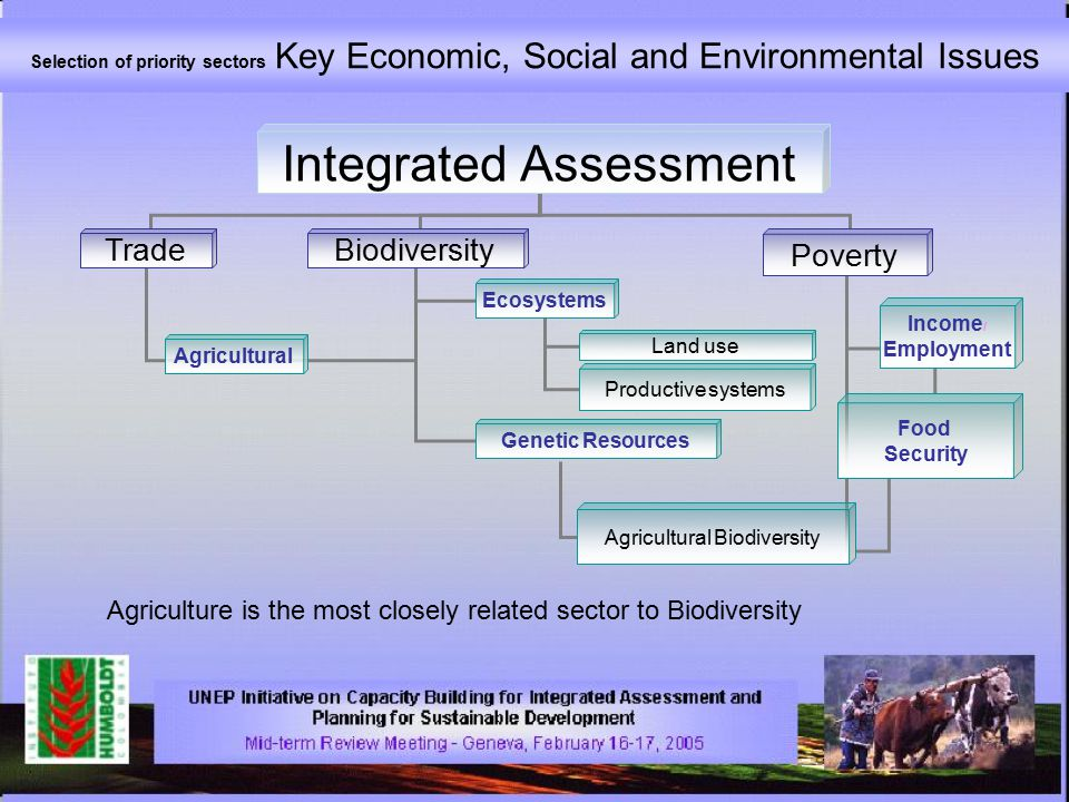 Selection of priority sectors Key Economic, Social and Environmental Issues Integrated Assessment TradeBiodiversity Poverty Agricultural Ecosystems Genetic Resources Income / Employment Food Security Agricultural Biodiversity Land use Productive systems Agriculture is the most closely related sector to Biodiversity