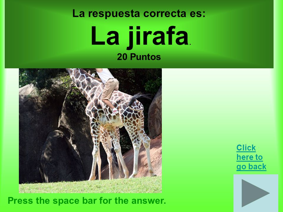Animales por 30 puntos, Nombre tres amimales.Press the space bar for the answer.
