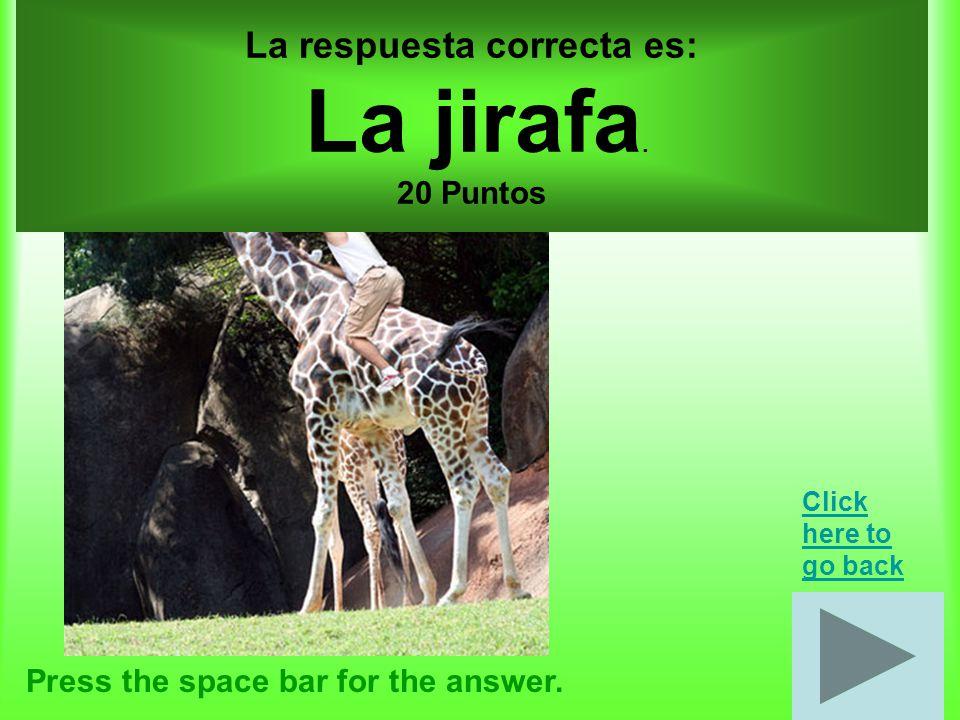 10 puntos por cada, total 30 puntos Press the space bar for the answer.