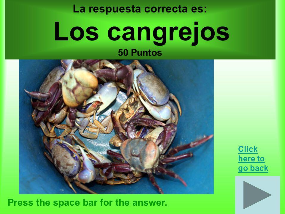 Cuerpo por 10 puntos Press the space bar for the answer.