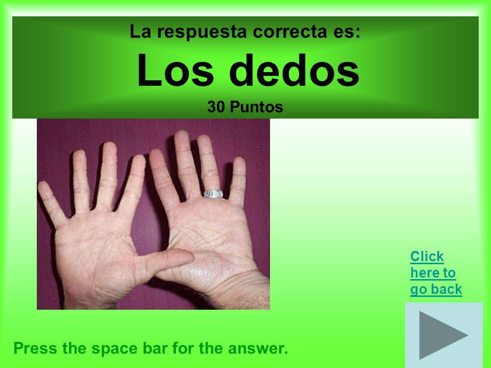 Cuerpo por 40 puntos Press the space bar for the answer.