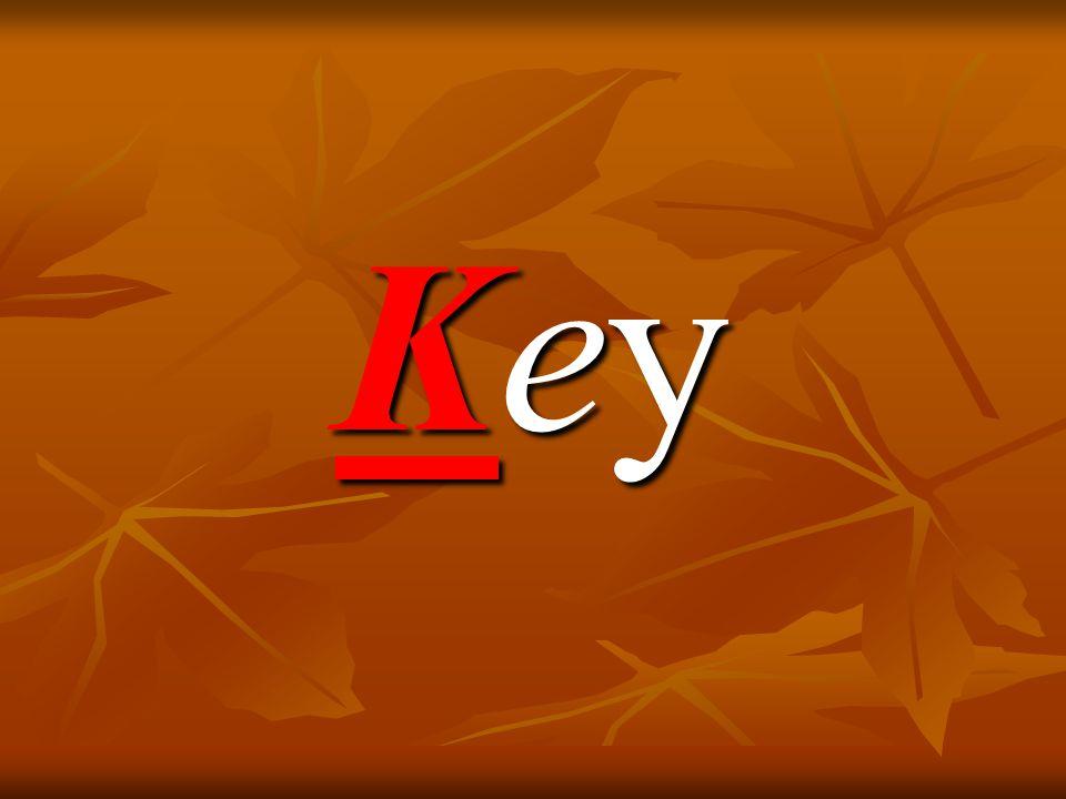 KeyKeyKeyKey
