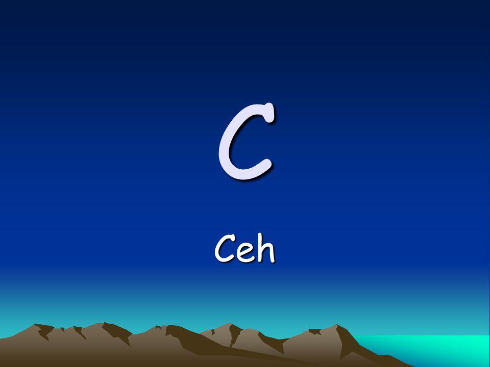 C Ceh