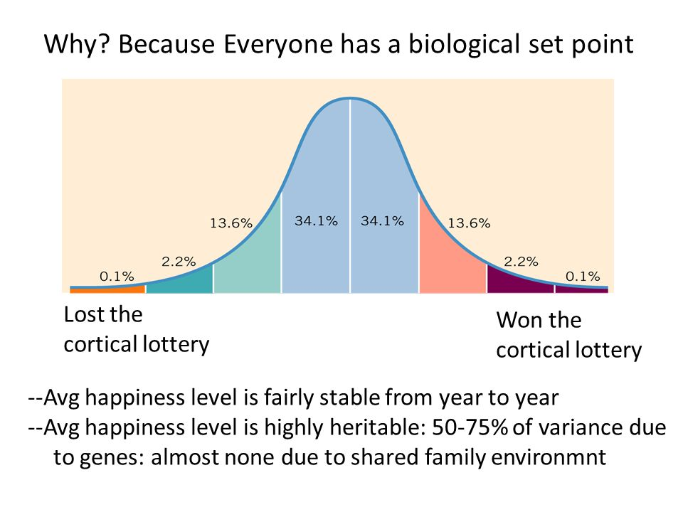 Why? Because Everyone has a biological set point --Avg happiness level is fairly stable from year to year --Avg happiness level is highly heritable: 5
