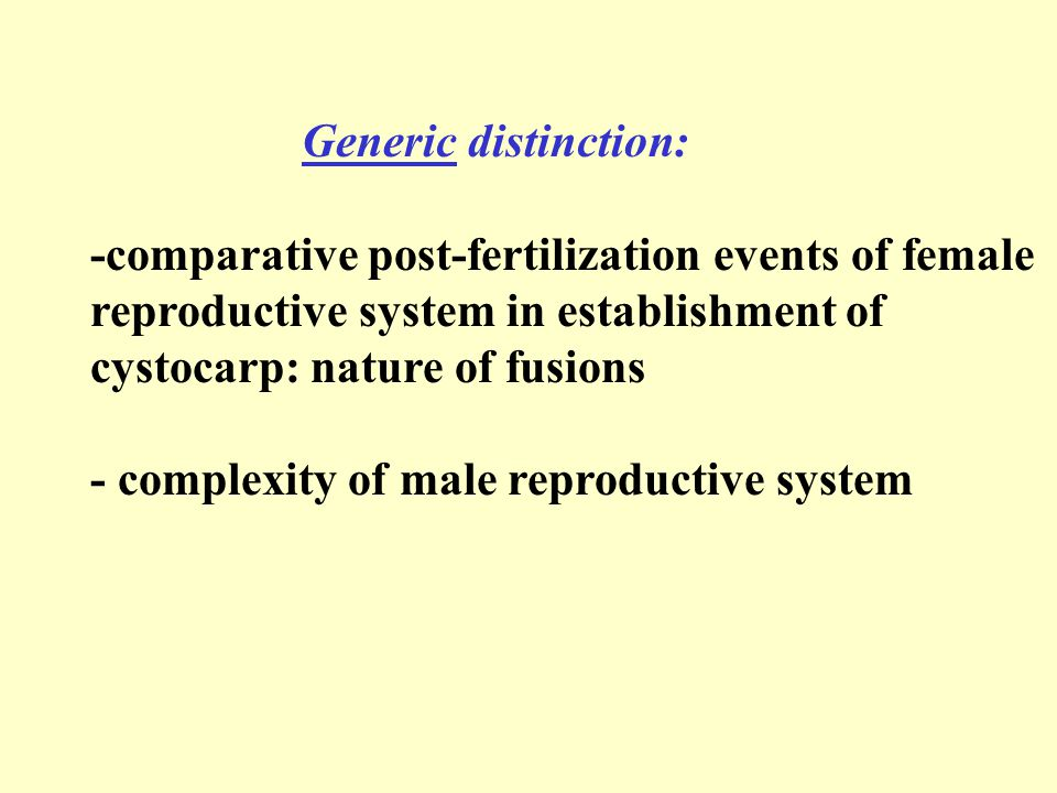 Generic distinction: -comparative post-fertilization events of female reproductive system in establishment of cystocarp: nature of fusions - complexity of male reproductive system