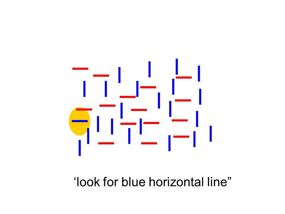 'look for blue horizontal line