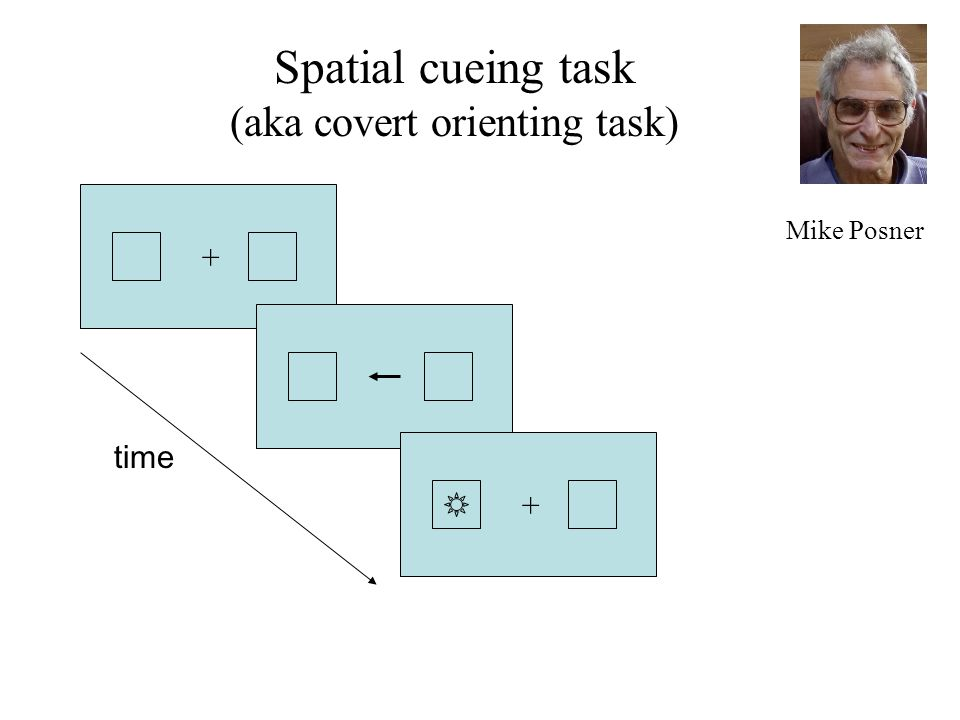 time Mike Posner ++ Spatial cueing task (aka covert orienting task)