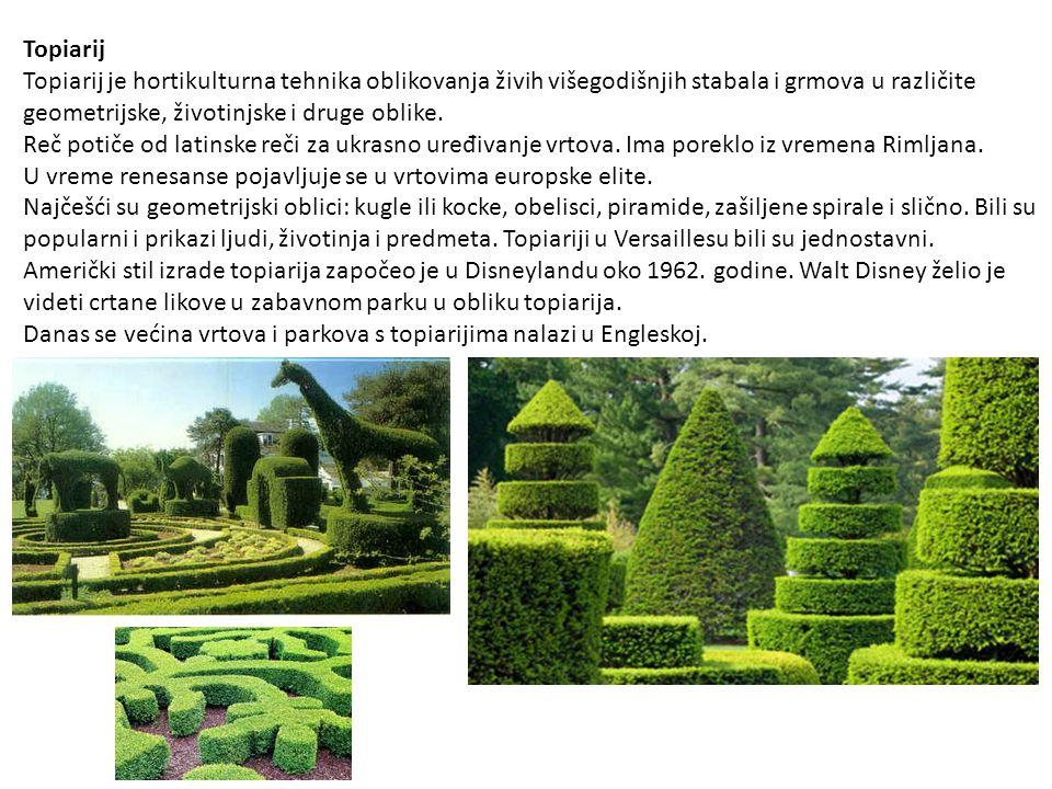 Topiarij Topiarij je hortikulturna tehnika oblikovanja živih višegodišnjih stabala i grmova u različite geometrijske, životinjske i druge oblike. Reč