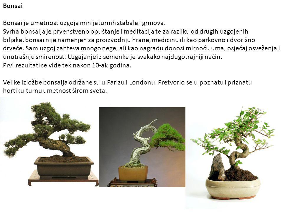 Bonsai Bonsai je umetnost uzgoja minijaturnih stabala i grmova. Svrha bonsaija je prvenstveno opuštanje i meditacija te za razliku od drugih uzgojenih