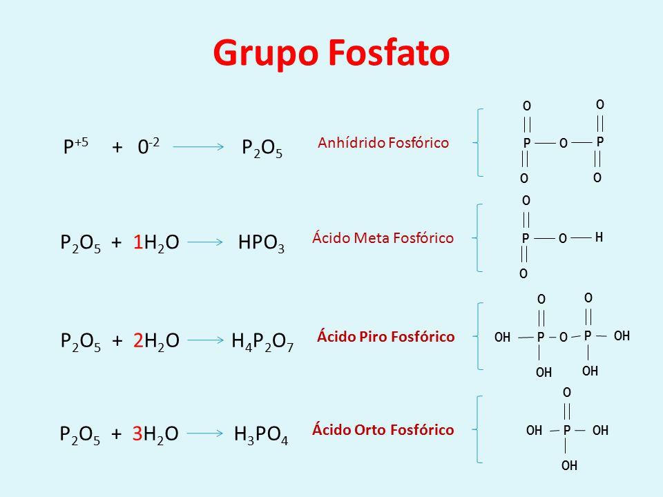 AMIDA C=OC=O OH C=OC=O NH 2 OH C=OC=O NH 2 H 2 CO 3 NH 3 H2OH2O Ác.