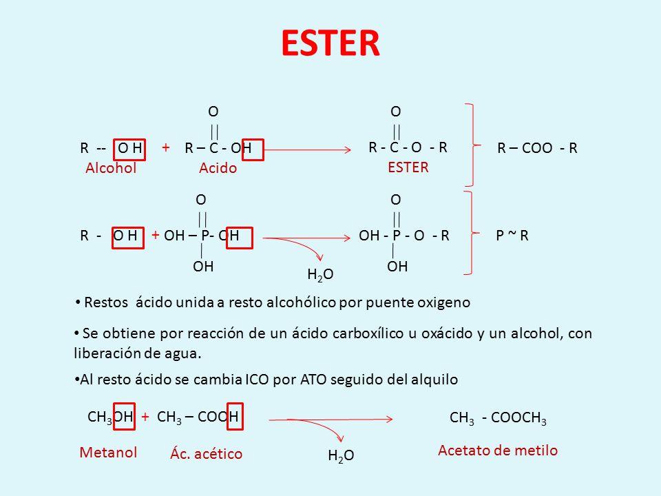 Lactona H2OH2O Ester cíclico, por reacción intramolecular de un alcohol ácido O O C O CH 2 O CH 2 OH – CH 2 – CH 2 – CH 2 – C – OH O