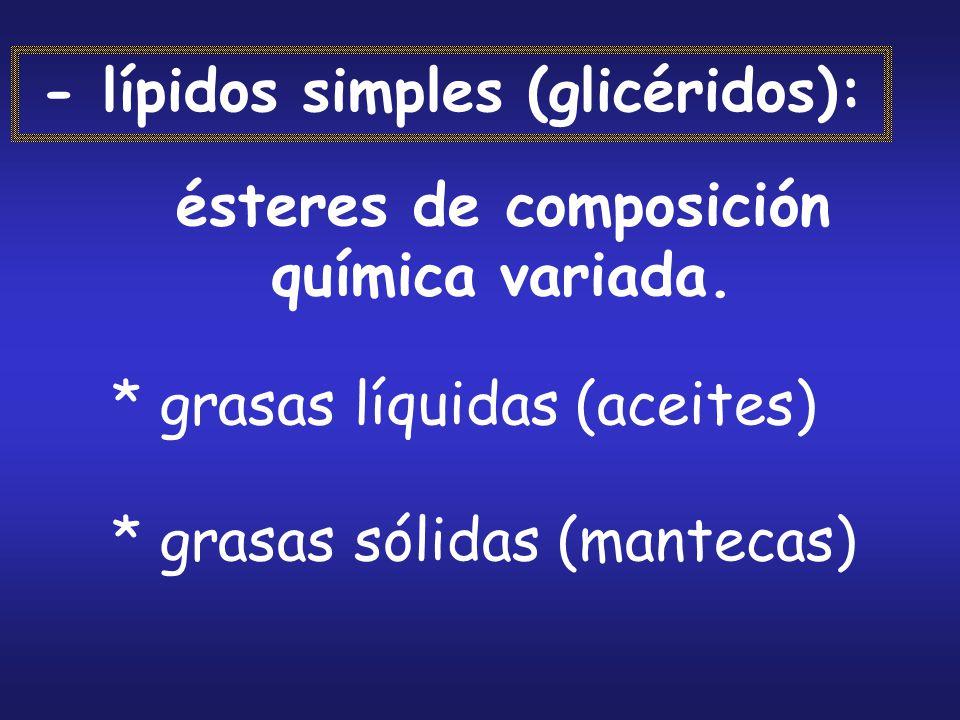 - lípidos simples (glicéridos): ésteres de composición química variada. * grasas líquidas (aceites) * grasas sólidas (mantecas)
