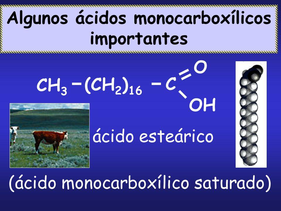 CH 3 C O OH (CH 2 ) 16 ácido esteárico (ácido monocarboxílico saturado) Algunos ácidos monocarboxílicos importantes