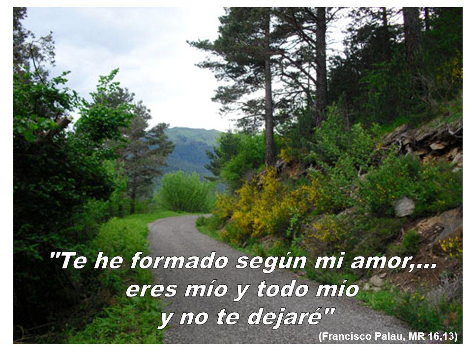 (Francisco Palau, MR 16,13)