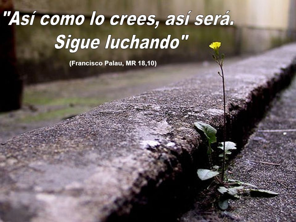 (Francisco Palau, MR 18,10)