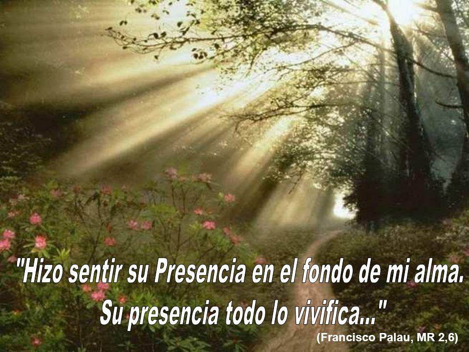 (Francisco Palau, MR 2,6)