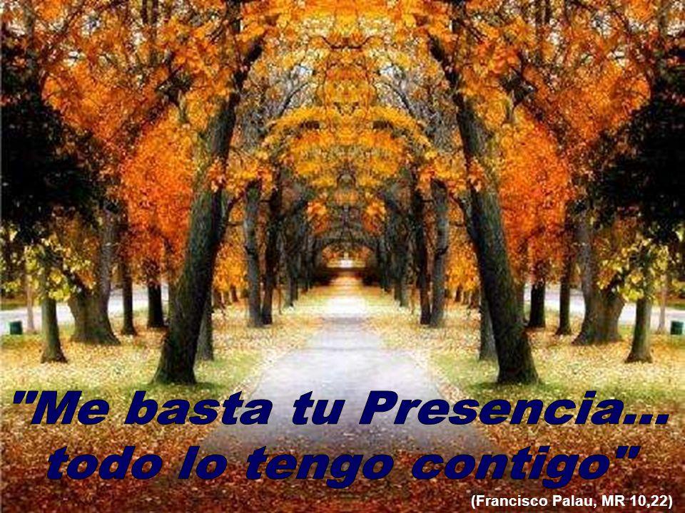 (Francisco Palau, MR 10,22)