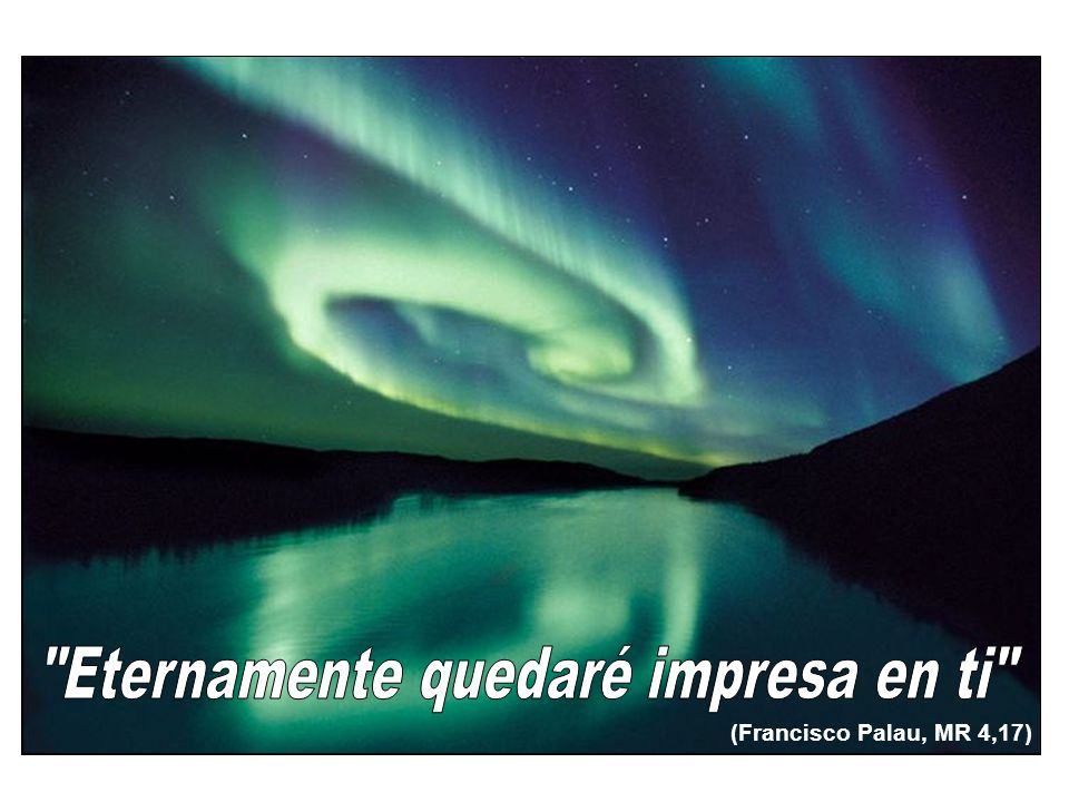 (Francisco Palau, MR 4,17)