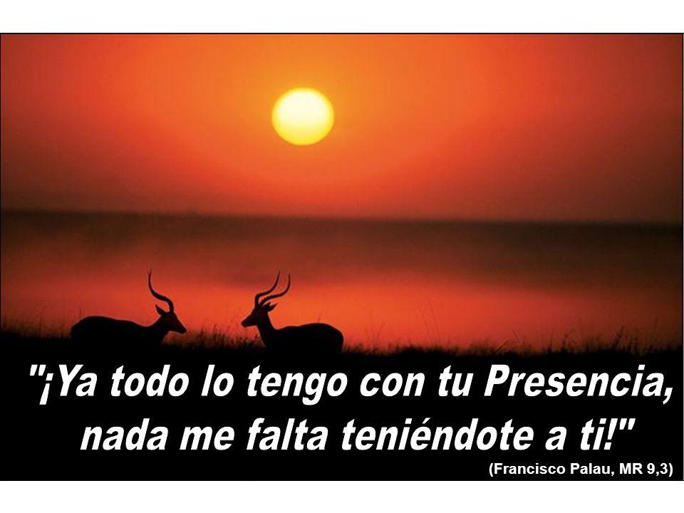 (Francisco Palau, MR 9,3)