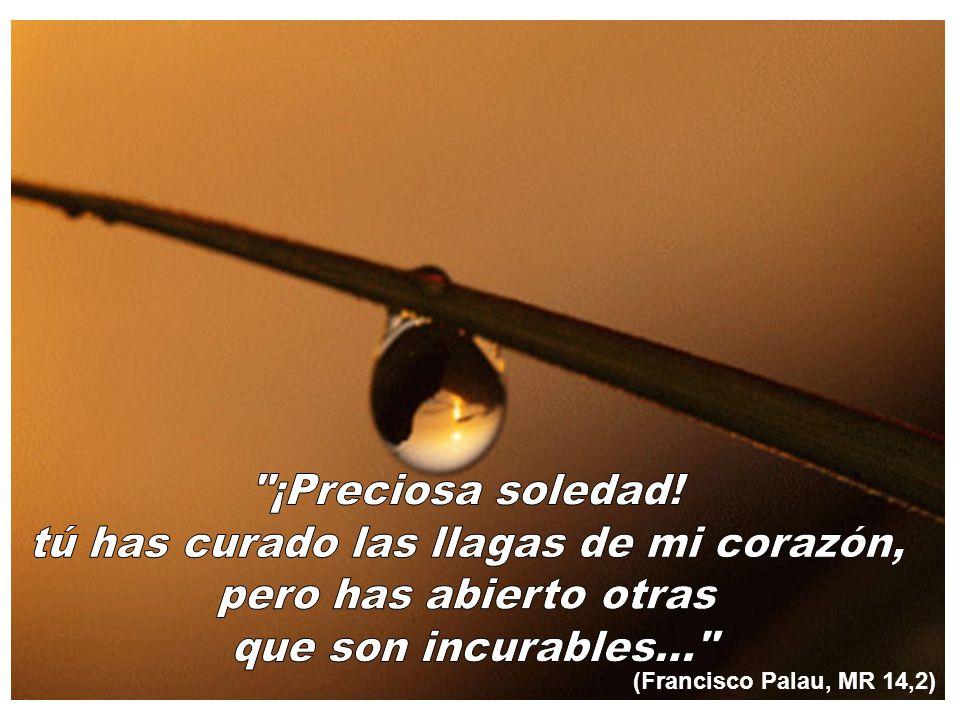 (Francisco Palau, MR 14,2)