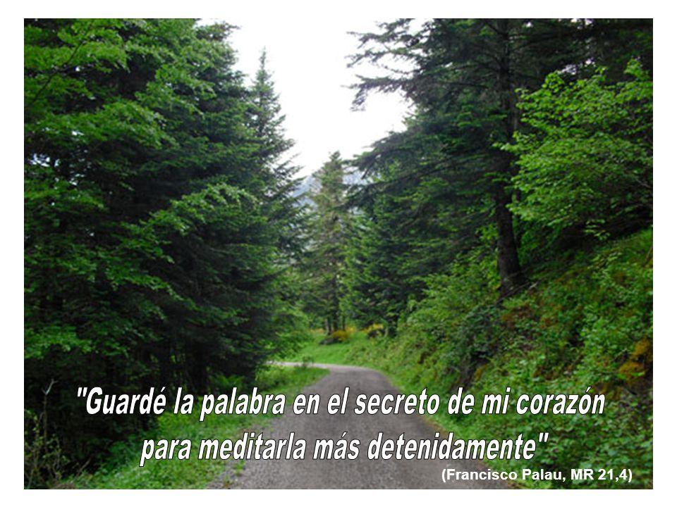 (Francisco Palau, MR 21,4)